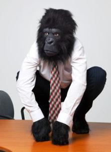 Gorilla on Desk